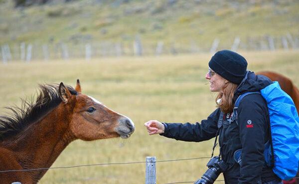 Persona y caballo en Sierra Baguales