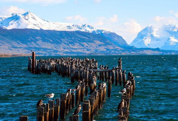Vista del puerto en la costanera de Puerto Natales