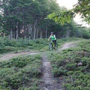 Half day mountain bike al sur de Punta Arenas